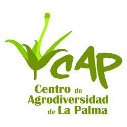 logo cap21
